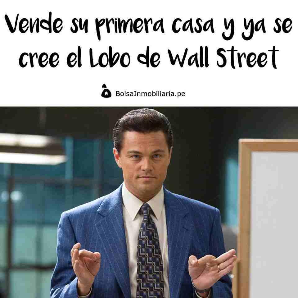 meme inmobiliario lobo wall street
